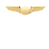 Pilot Wings for Airline Uniform