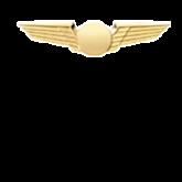 Pilot Wings for Airline Uniform